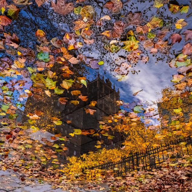 Tudor City Reflections