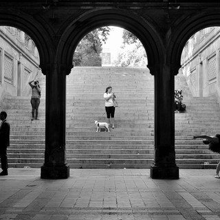 Bethesda Terrace Photo Shoots