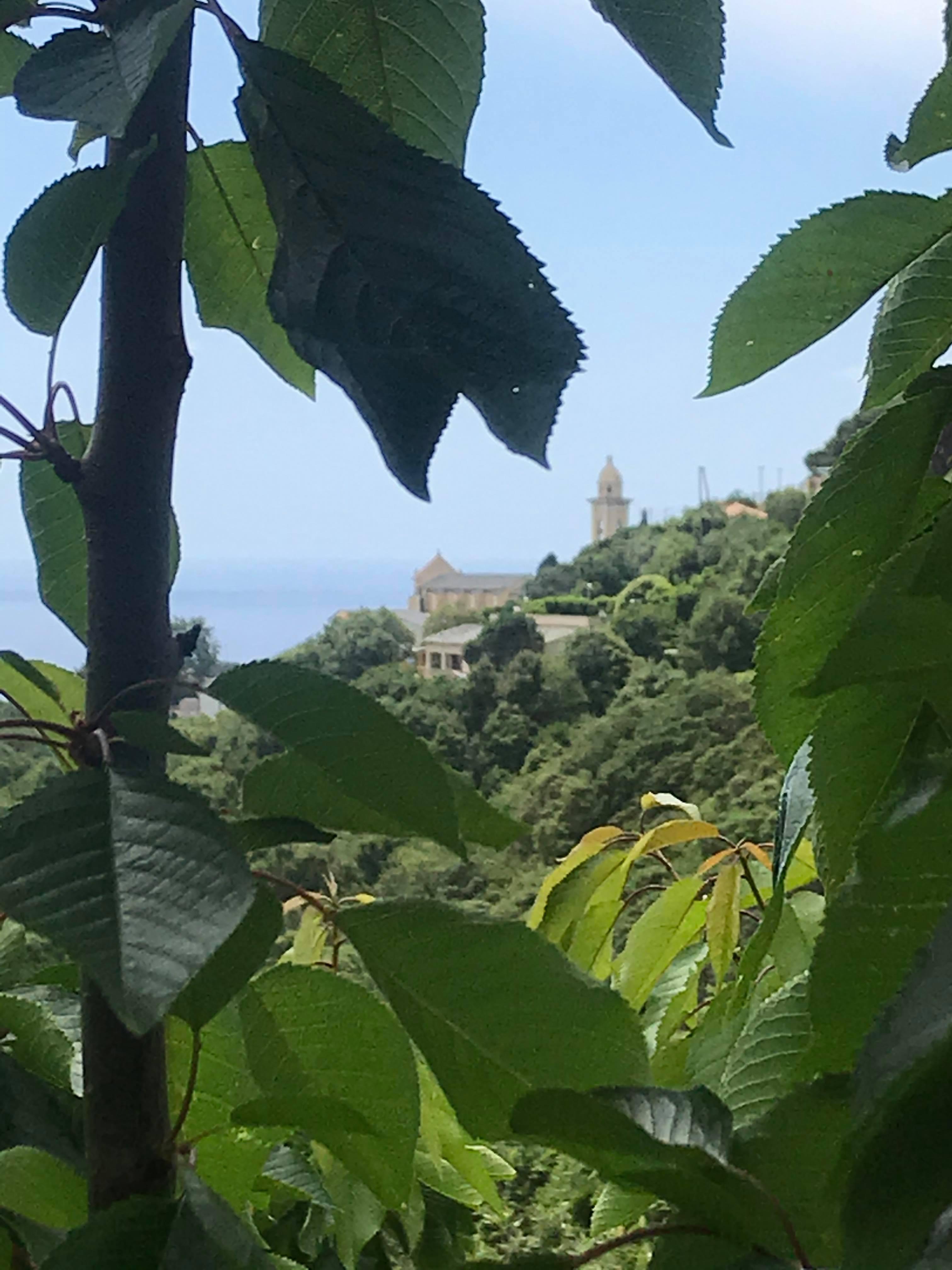 Sainte Lucie Ville di pietrabugno (5)