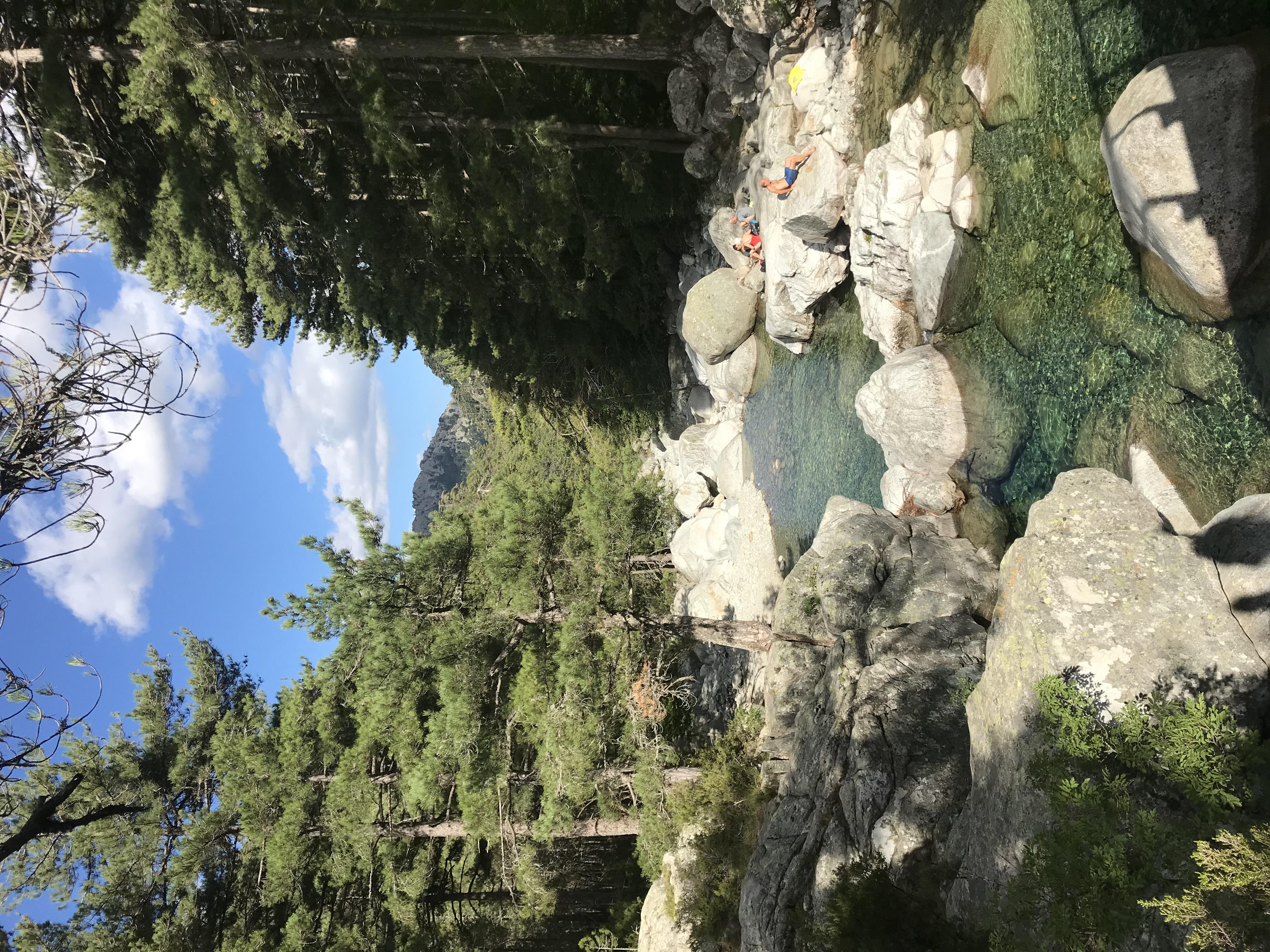 Rivière Le Manganello Canaglia VIVARIO V