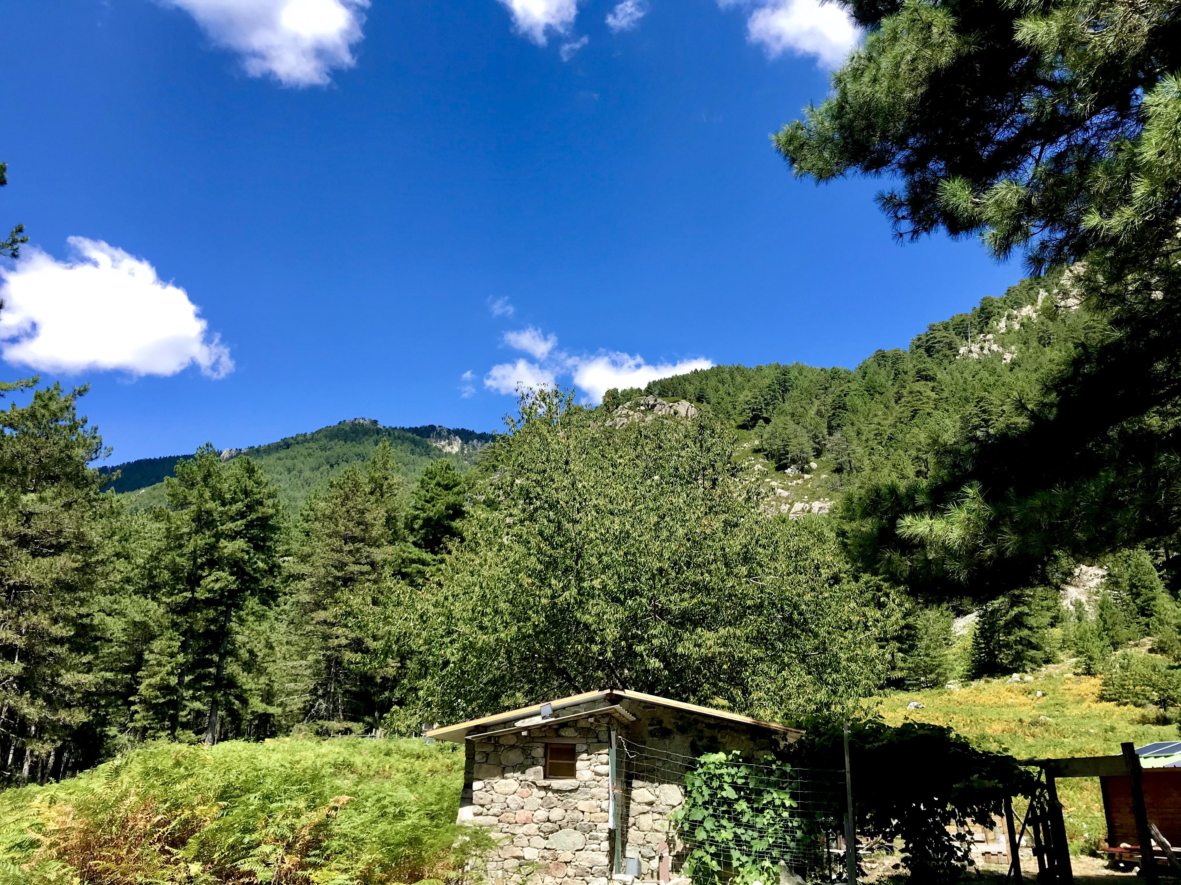 Bergerie de TOLLA Rivière Le Manganello
