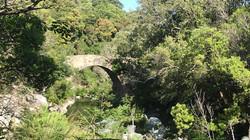 OGLIASTRO Pont Génois