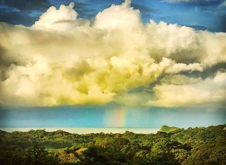 A Trip Across the Rainbow Bridge