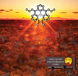 JACS_Cover_Gianetti.png