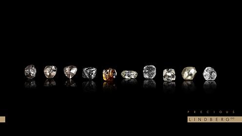 Precious Diamond .png