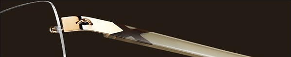 02.BUFFALO HORN - MAMMOTH TUSK - MUSK OX