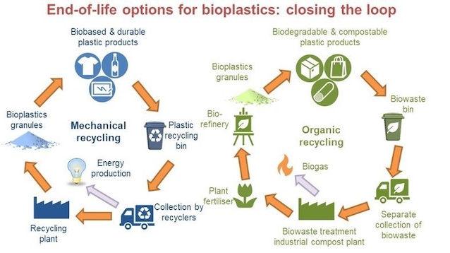 bioplastics-IDtechEx-650_0.jpg
