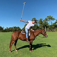 Polo Technique #polo #poloseason #polote
