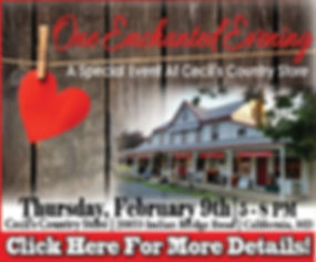 One Enchanted Evening 2017 online ad.jpg