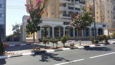 הצד העירוני של הסטודיו הרחוב הראשי