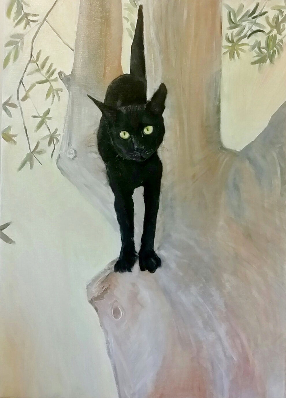 makalele( my kitten)