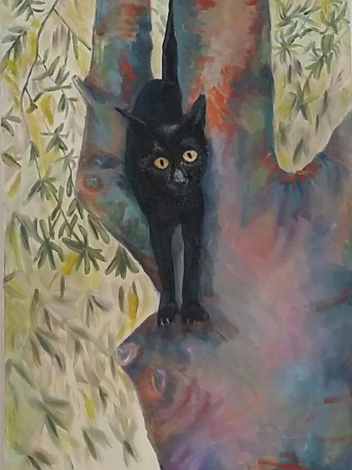 makalele (my kitten )