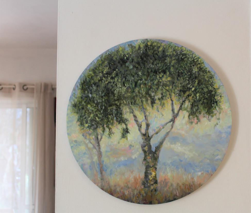 olive tree by the window.jpg
