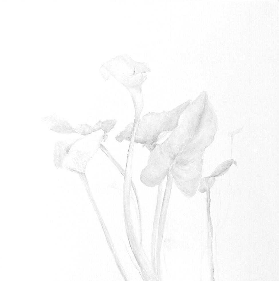 calla lily oil on canvas 120x120cm 2021