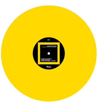 Novaga Yellow vinyl.png