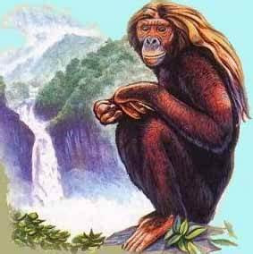 The Orang Pendek: Bigfoot's Little Cousin