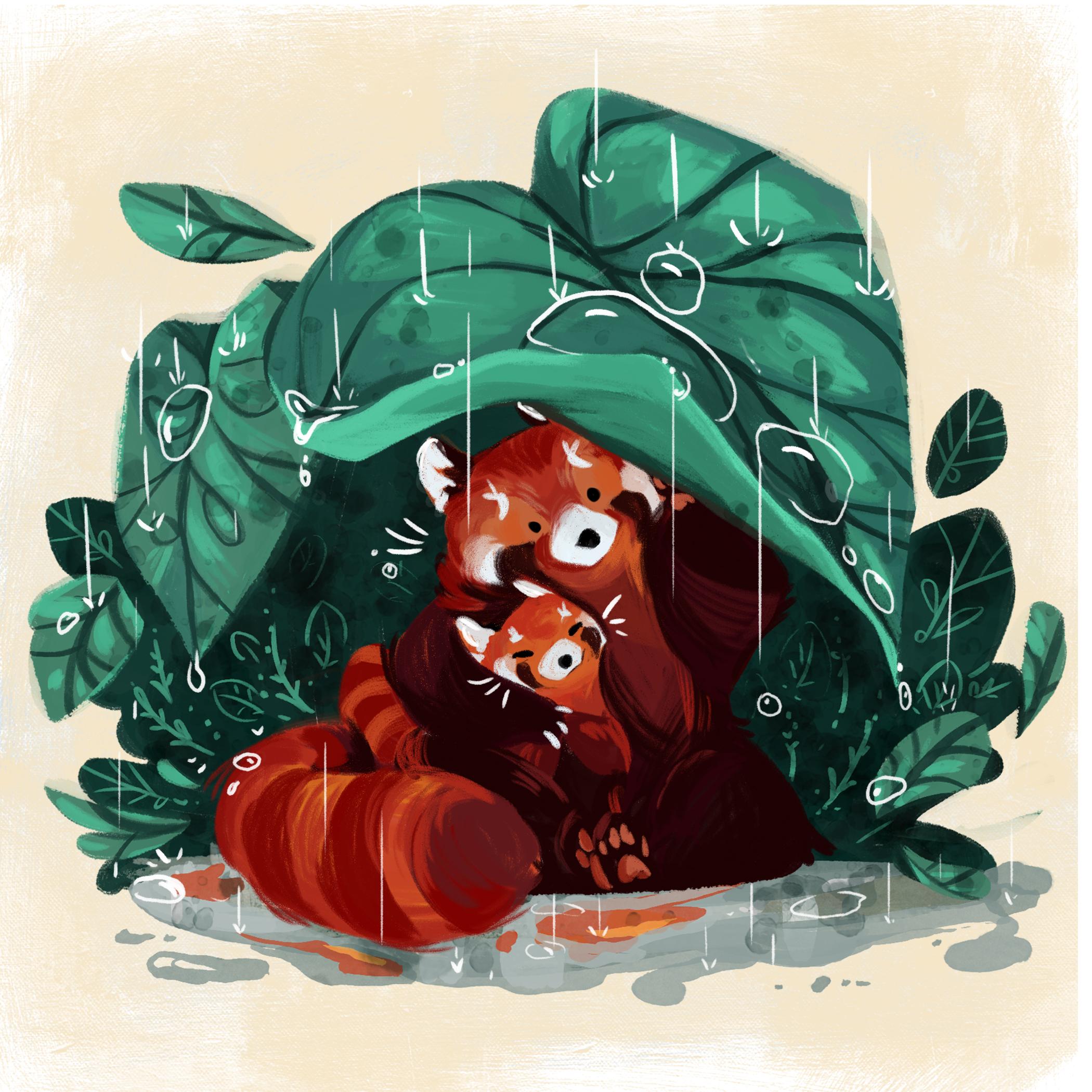 Red Panda Design