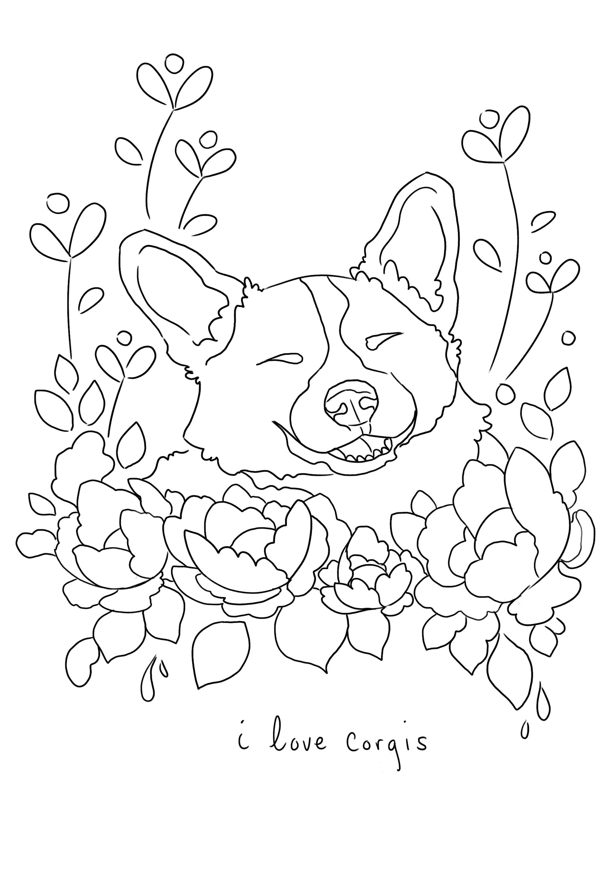 corgi coloring page