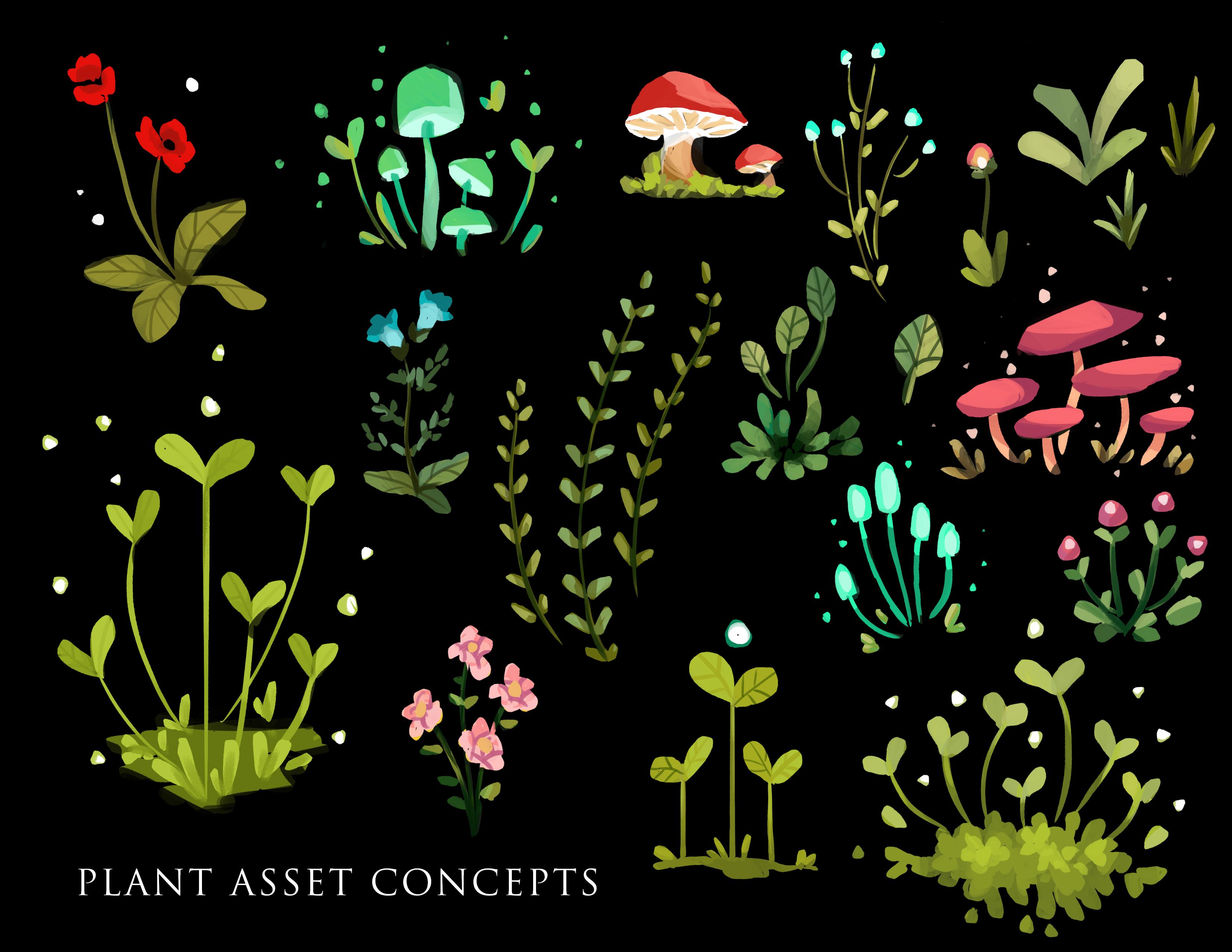 plant asset concepts