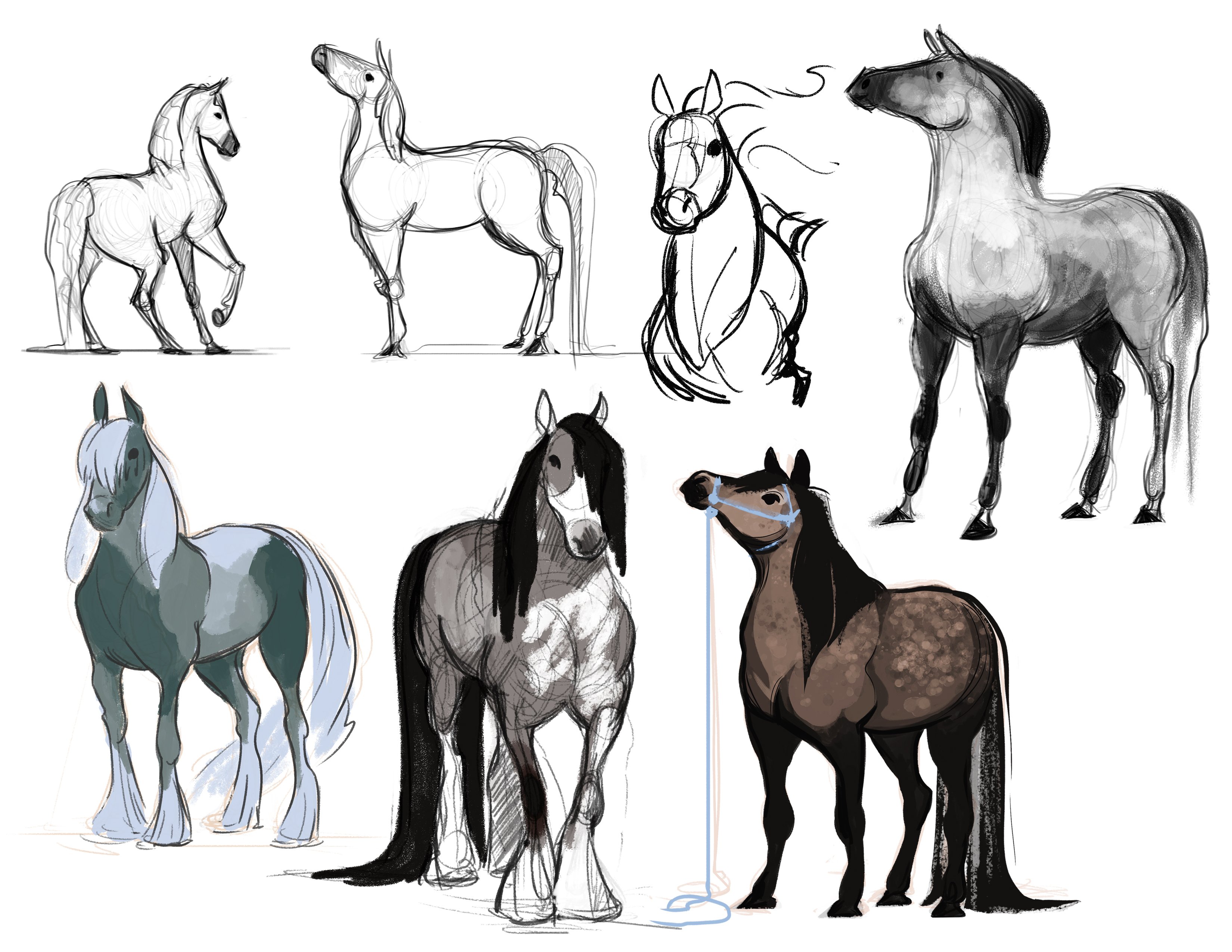 Horton_horse sketches 3