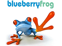 blueberry-frog-logo.png