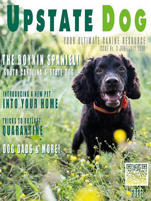 THE BOYKIN ISSUE: JUNE/JULY 2020 - ISSUE #3