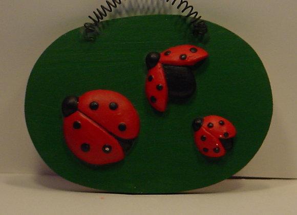 Ladybug Flat