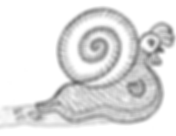 Black and white illustration of a snailwih he head and wings of a chicken