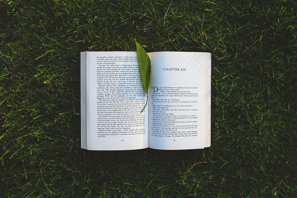 An open book sits on grass with a green leaf for a bookmark