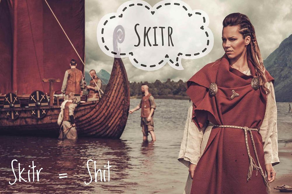 Skitr_Viking Cursing