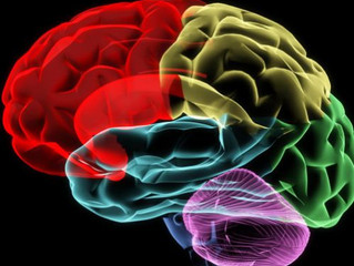 Tips For Improving Your Brain Performance