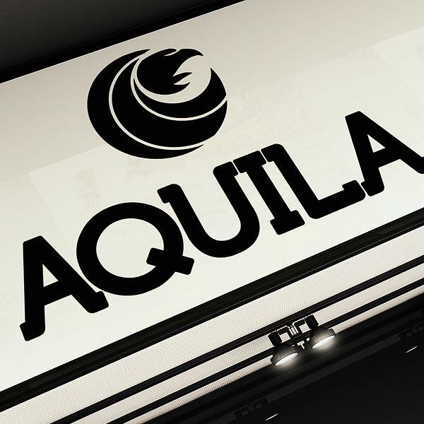 Mango_Graphic_Design_Branding_Project_Aq
