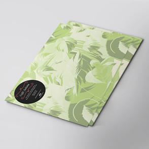 Mango_Graphic_Design_Branding_Project_Ca