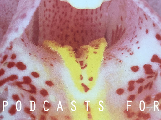 Music & Culture Podcasts > LA Traffic