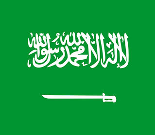 saudi-arabia-162413_640_edited.jpg