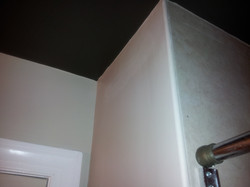 See the contrast w/Dark Grey Ceiling