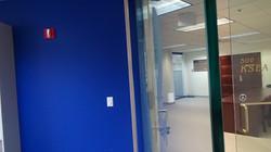 Bold Blue Office Transformation