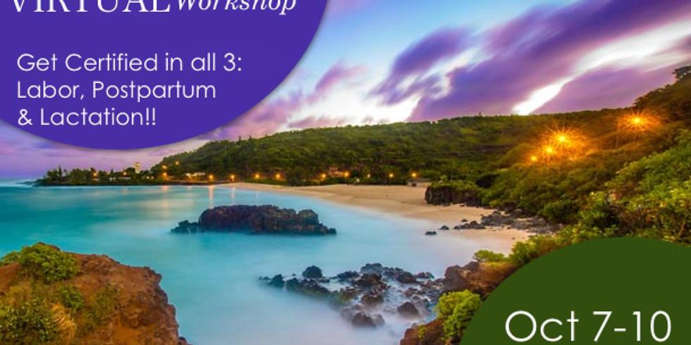 Virtual Hybrid Hawaii Workshop - Live & Interactive Combo Labor and Postpartum Doula + Lactation + Business