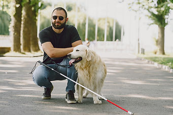 guide-dog-helping-blind-man-in-the-city-