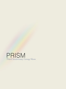 SLNFA_PRISM_wix-04.jpg