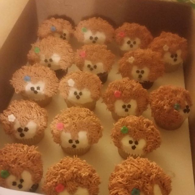 Hedgehog cupcakes ....