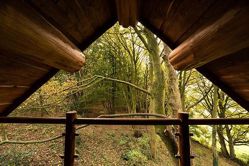 Log Cabin Gable Balcony View Swinney Woo