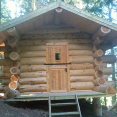 Small handcrafted log cabin