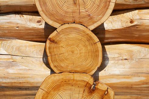 Real Log Cabin Scandinavian Saddle Notch
