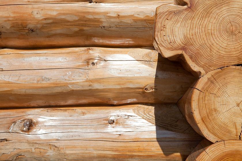 Full Scribe Log Building.jpg