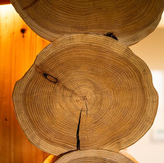 Log Ends - Swinney Wood Log Cabin.jpg