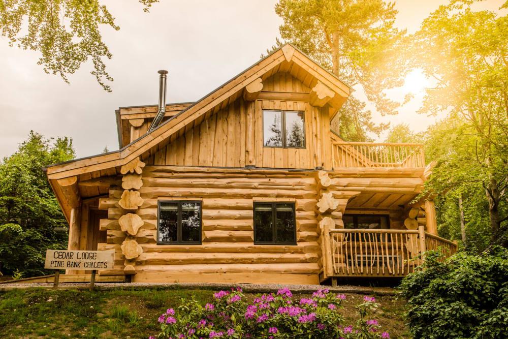 A log cabin in the evening sun