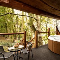 Glass Balustrade Log Cabin.jpg