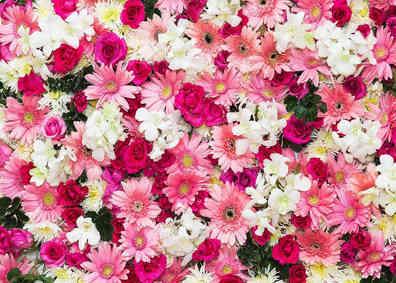 Nummer 4 Blumenwand
