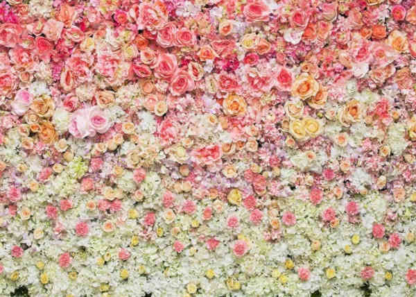 Nummer 5 Blumenwand
